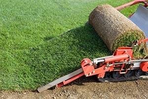 Udrulning af græs